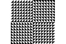 Optical Illusions with Chris Vivas